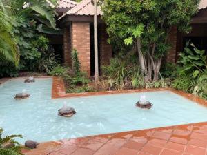 Modjadji Estate Water Feature